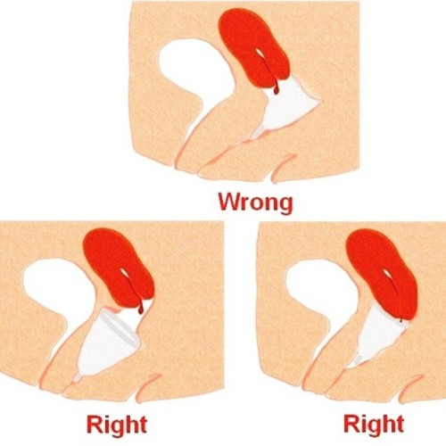 Menstrual Cup How to Insert